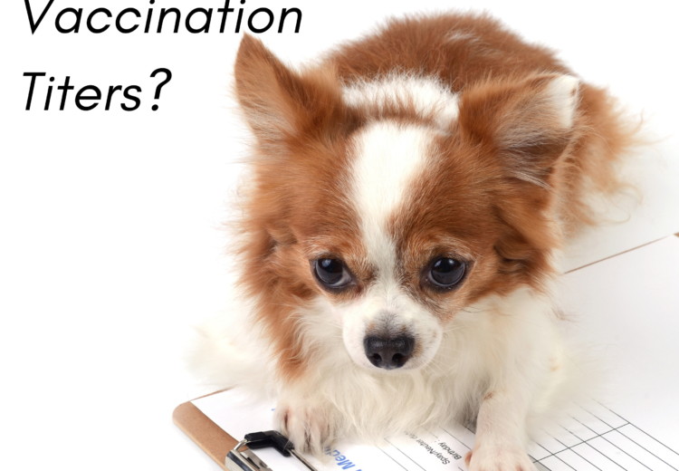 What are Vaccination Titers?